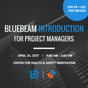 INTRO BLUEBEAM BOOT CAMP1